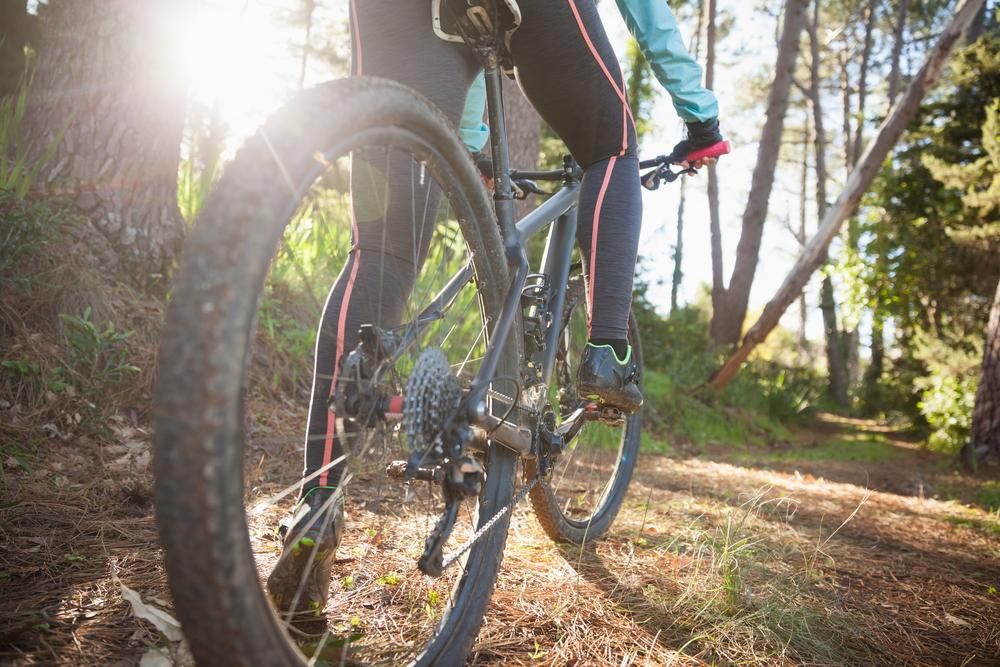 Mountain bike  on a wooded trail